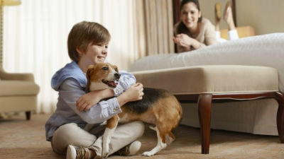 Hotel Features | Pet Policy